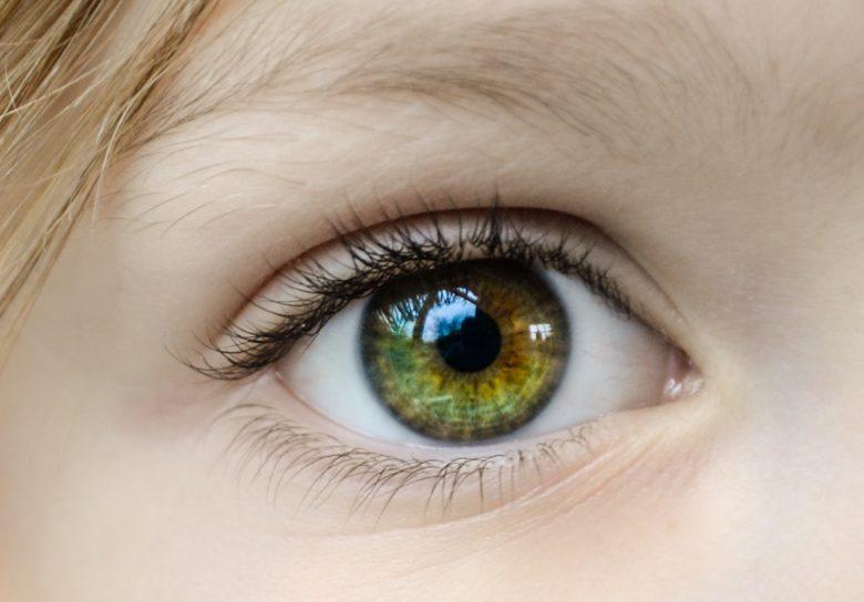 見分けるために見つめる瞳