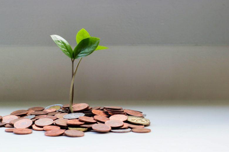 茶色のコインから生える植物